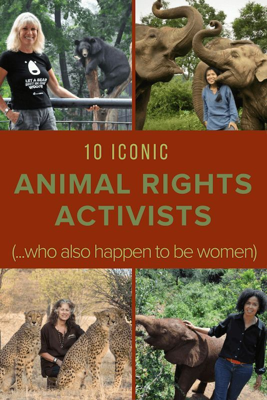 15 Female Wildlife Conservationists Animal Rights Activists Animal Rights Activist Animal Rights Animal Conservation