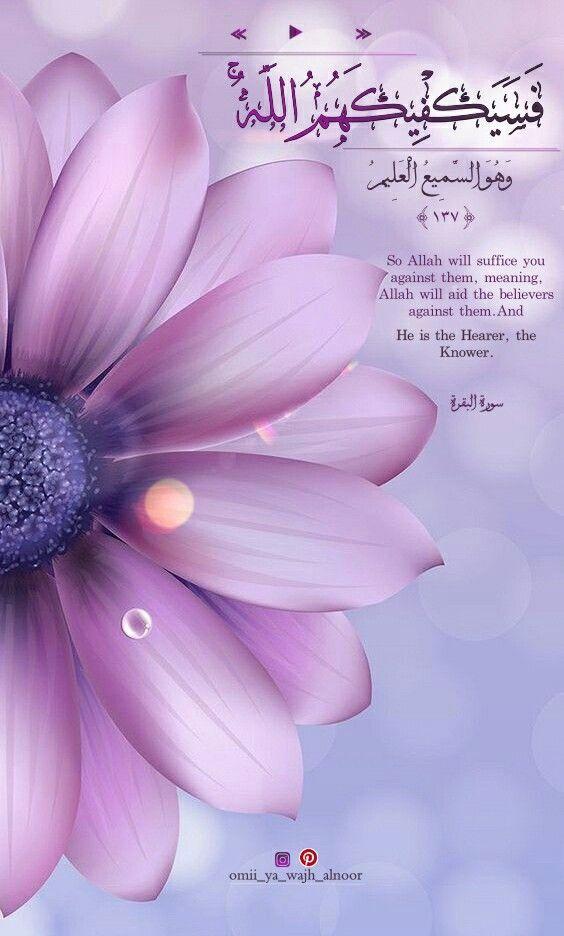 ف س ي ك ف يك ه م الل ه سورة البقرة حالات واتساب انستقرام صباح الخير Meant To Be Allah Plants