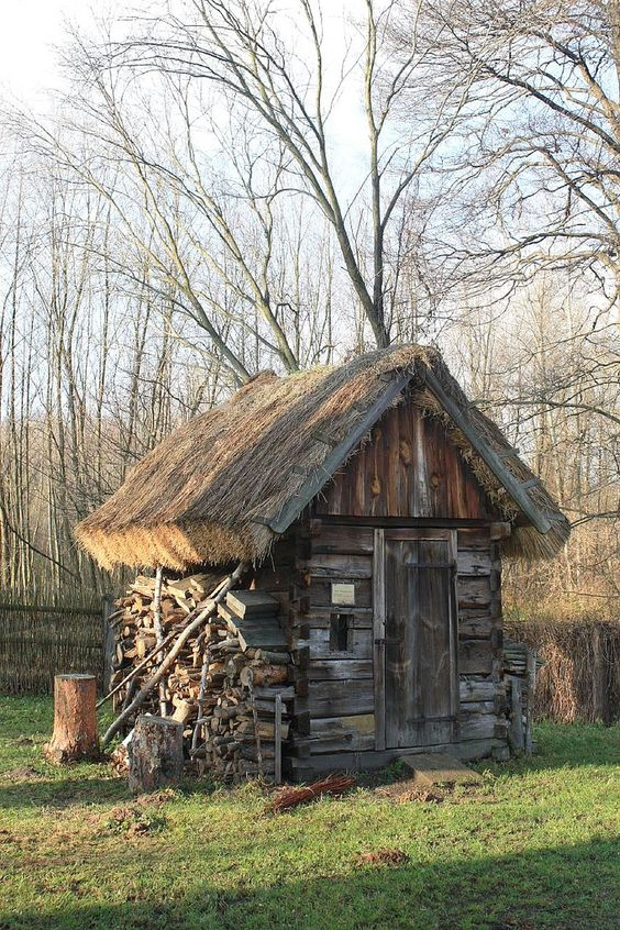 Sheds thatched roof and poland on pinterest for Shed roof cottage