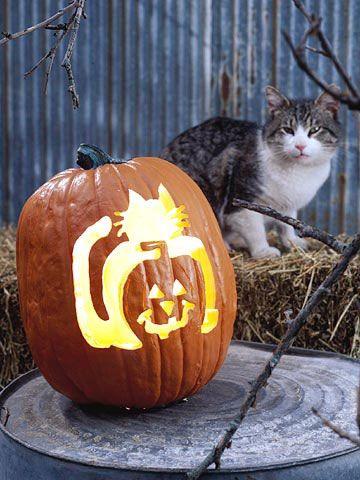 kitteh pumpkin!