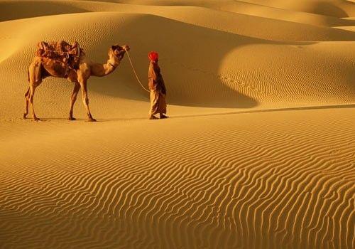 Gobi desert ~ Shop for your next adventure on CoutureCandy.com and get 15% off!