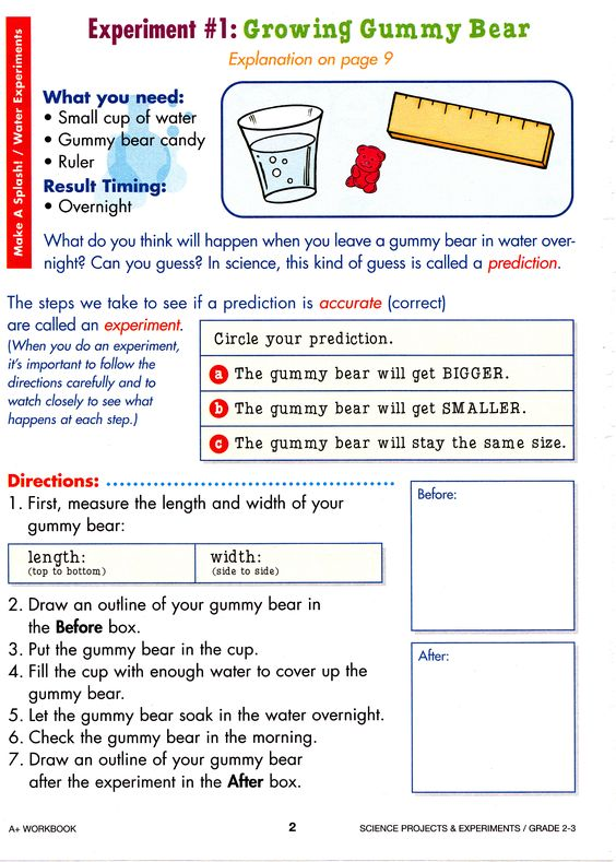 science projects for third graders Looking for 3rd grade science fair projects browse this fantastic collection of  third grade science fair project ideas and cool 3rd grade science experiments.