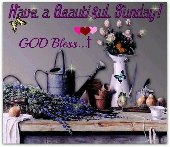 Happy Sunday.