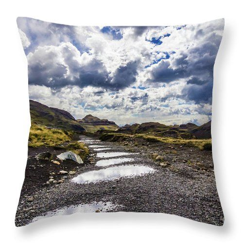 Rainy Day In Torres Del Paine National Park Throw Pillow For Sale By Lyl Dil Creations National Parks Torres Del Paine National Park Pillow Sale