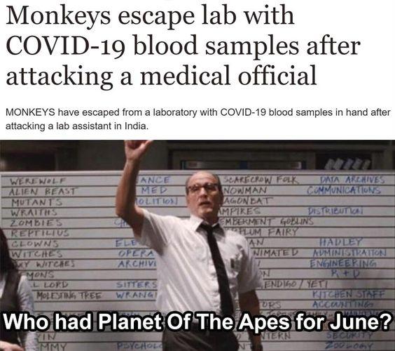 After Dark Funny Meme Dump 35 Pics