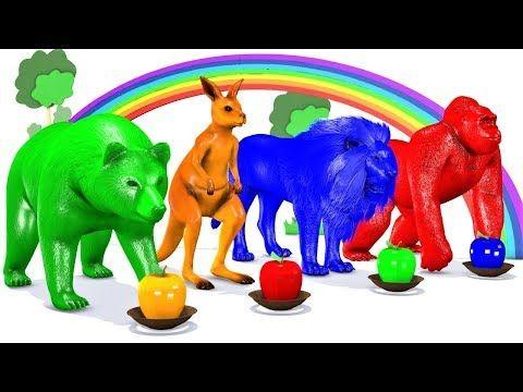 تعليم الألوان للاطفال مع حيوانات الغابة حيوانات اطفال اغاني اطفال العاب الاطفال الصغار Youtube Animaux Les Plus Droles Animaux Drole