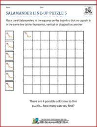 salamander line up puzzle 5 5th grade math puzzles math pinterest 5th grade math. Black Bedroom Furniture Sets. Home Design Ideas