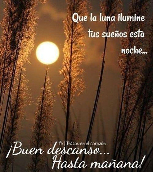 Sigueme Leojuansinmiedo Bendecida Noche Buenasnoches