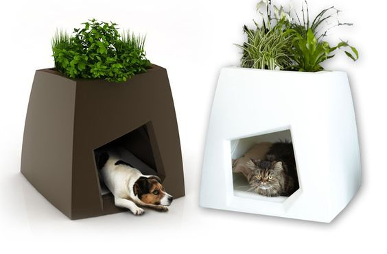 How About A Green House For Your Dog Or Cat Modern Indoor Kennels Planters Pet Friendly Furniture Modern Pet Beds Modern Pet