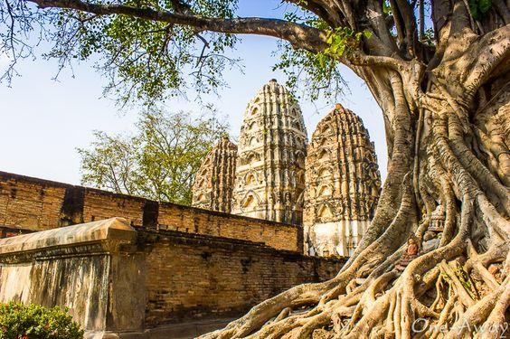 Sukhothai Historical Park scour the ruins of  Wat Si Sawai.
