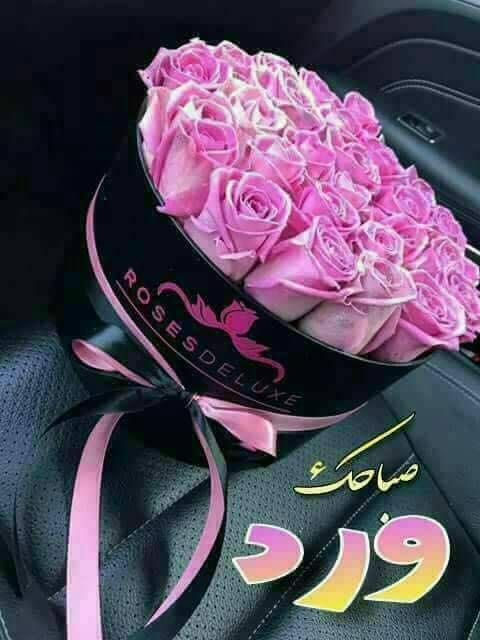 صباح الخيرات Good Morning Arabic Good Morning Love Morning Wish