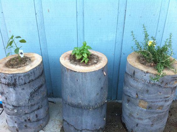 diy stump planters