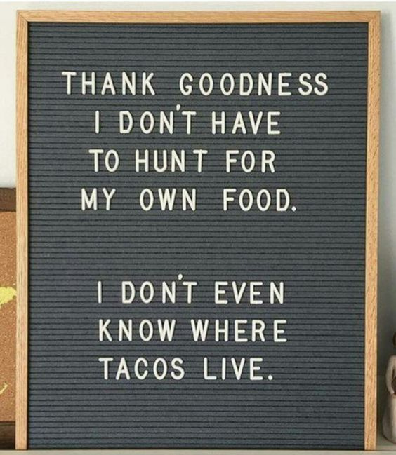 I could hunt for my own food, and yes tacos... I know where u live.