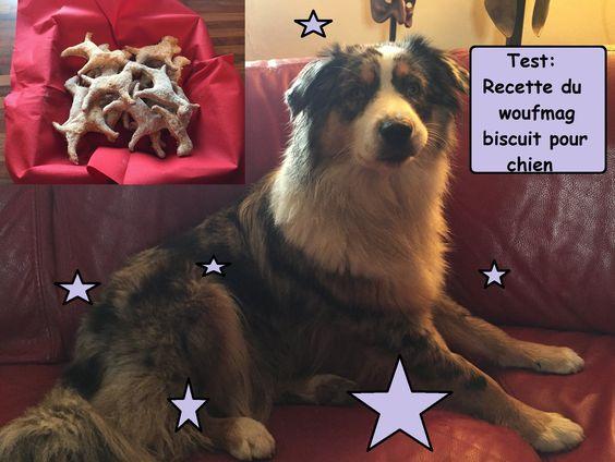 Test : recette  du woufmag biscuits pour chien