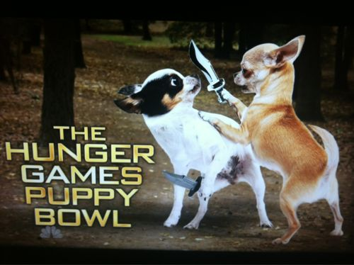 SNL's 74th Annual Hunger Games Puppy Bowl
