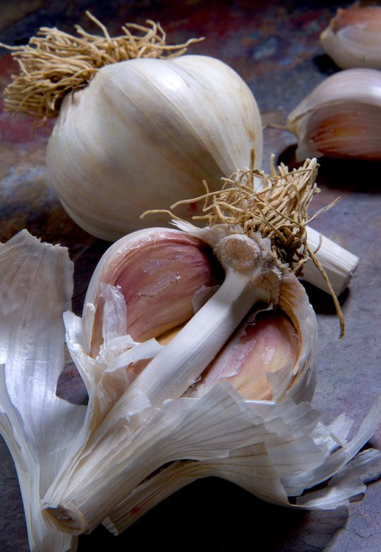 This is perfect garlic. Photo by DonnaTurner Ruhlman