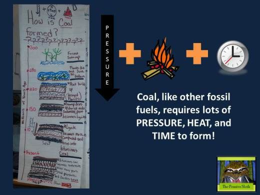 Anchor chart and slide showing formation of coal.   5th Grade Earth Science STAAR preparation at thepensivesloth.com