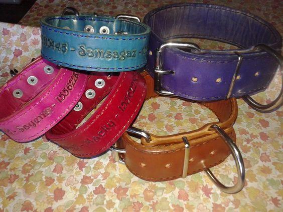 american bully pit rottweiler bulldog collar reforzado cuero