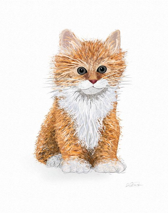 Cat Art Print Kitten Drawing Instant by KatPearsonDesignsUK