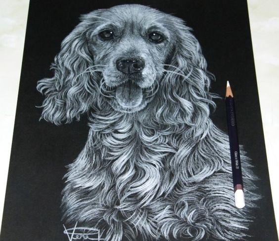 chiens uniques aux monde  7d91148d377e9c74bd44eaddaa78d02a