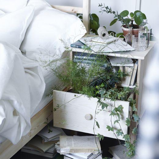"""Grünpflanzen bringen von Natur aus Ruhe in dein Schlafzimmer. Selbst TARVA Ablagetisch in Kiefer lässt sich wie hier für die """"grüne Welle"""" nutzen."""