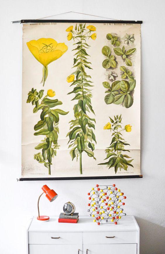 Antique botanical chart botanical poster von MightyVintage auf Etsy