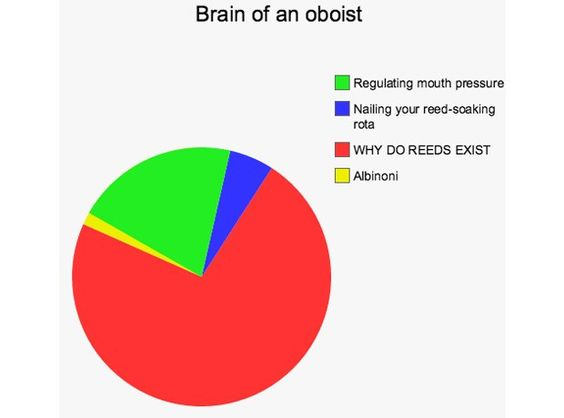 Brain Of An Oboist  Awesome    Pie Charts And Humor