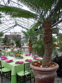 Michigan Wedding Venue And Botanical Garden Planterra Conservatory My Christmas Wedding