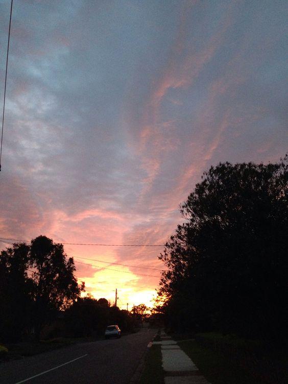 Dawn in the suburbs