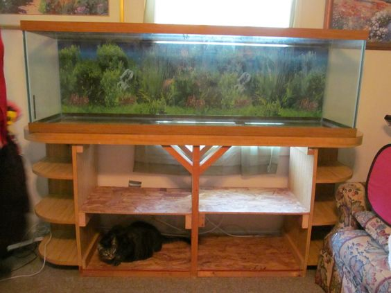 150 gallon fish tank - Google Search