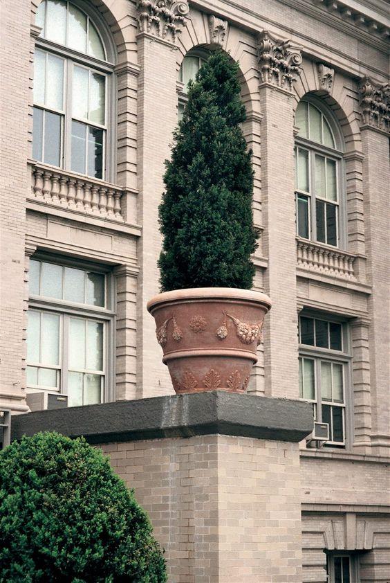 New York Botanical Garden nel Bronx, NY  #terracottapot #terracotta #pot #vase #newyork #ny #fornacemasini #ny #garden #newyorkbotanicalgarden #intriordesign #gardendesign #amazing #handmade #impruneta