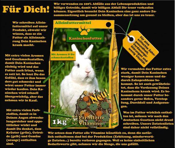 """Hör auf dein Kaninchen zu vergiften! Warum kaufst du """"Kaninchenfutter""""? Weil du nicht weißt was ein Kaninchen wirklich braucht? Wenn dir das Wohlbefinden deines Tieres am Herzen liegt, informiere dich! #Kaninchenfutter #Kaninchen #richtig #füttern"""
