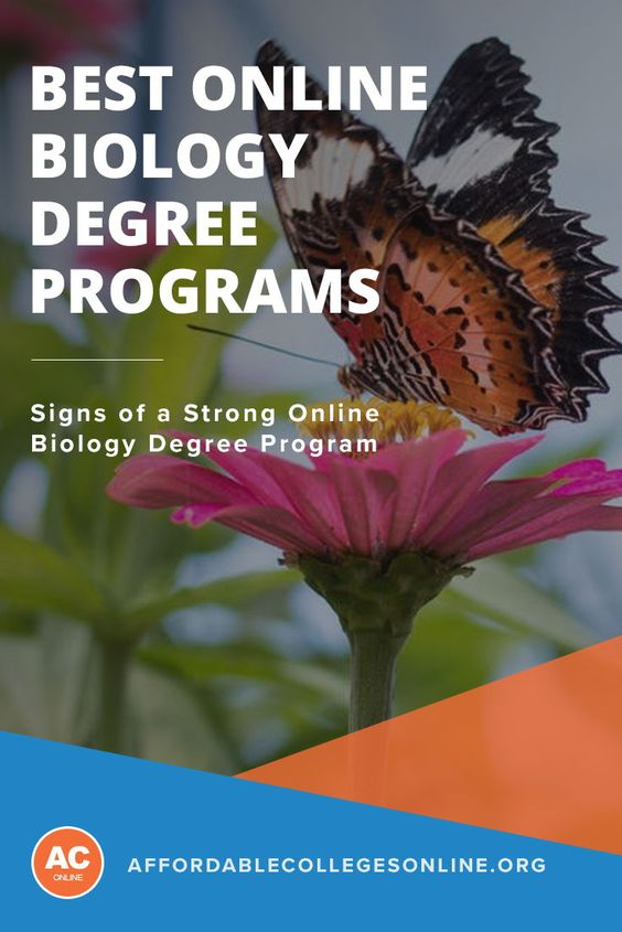 While the first image that may come to mind when considering a degree in biology is of lab coats and lecture halls, biology programs have seen a marked jump in popularity in the virtual classroom space. Learn mroe about the many biology programs offered entirely online, including course specifics, which schools are offering these programs and special considerations for students considering pursuing an online biology degree.