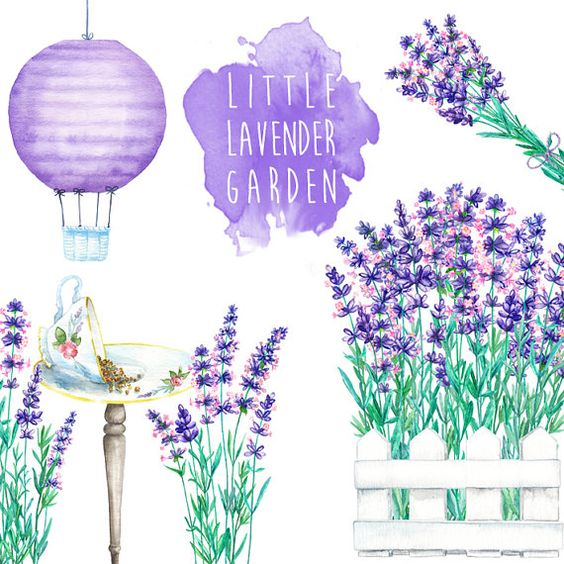 Little Lavender Garden Cliparts  digital by WatercolorMarket