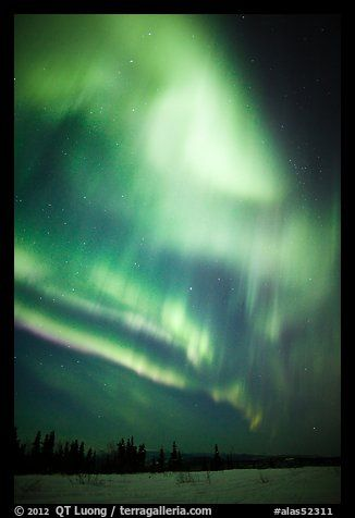 Solar Storm in sky above snowy meadow. Alaska, USA