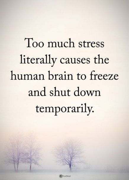 Quotes life stress words 41 Ideas #quotes