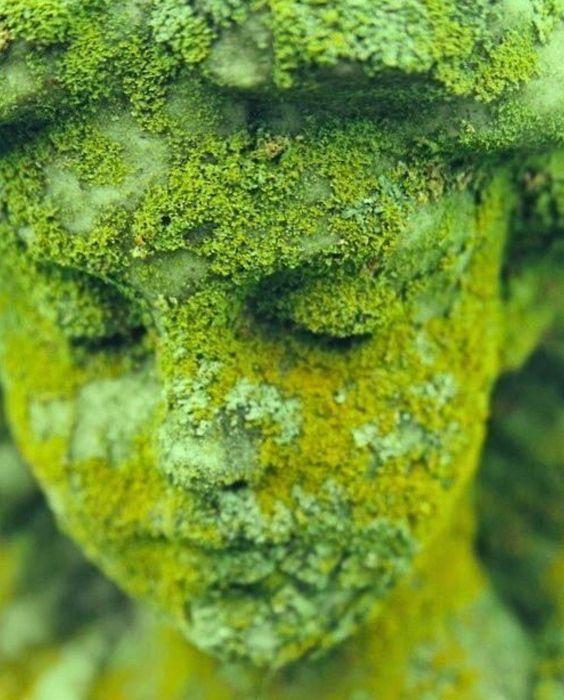 Statue, mousse: