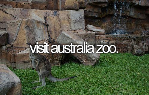 Visit an Australia Zoo