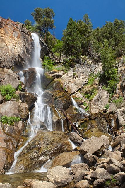 Top 10 Things to see or do in Sequoia and Kings Canyon ...