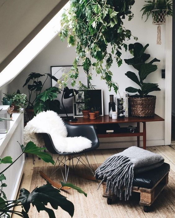 Feminine Workspaces Corner Office Space with Plants Throw Black Chair Wood Flooring