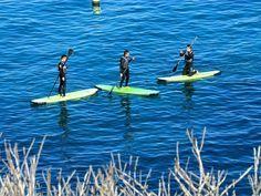 Stand Up Paddle at La Jolla
