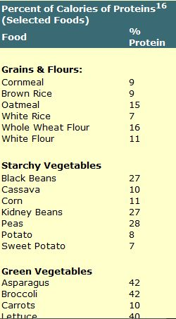 vegetable sources protein
