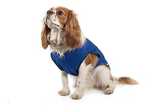 Ancol Chillax Pet Dog Cooling Vest Coat Cool Down Your Dog In