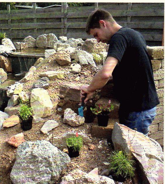 Beplanten rotstuin met links boven een stukje van de waterval project rotstuinenbak - Amenager een rotstuin ...
