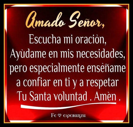 Amado dios escucha mi oraci n ay dame en mis necesidades for Ensename todo