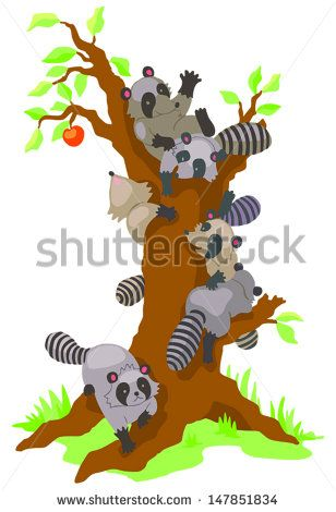 Group of cute baby Raccoons dominating and climbing an old leafless persimmon tree in isolated background, create by cartoon vector