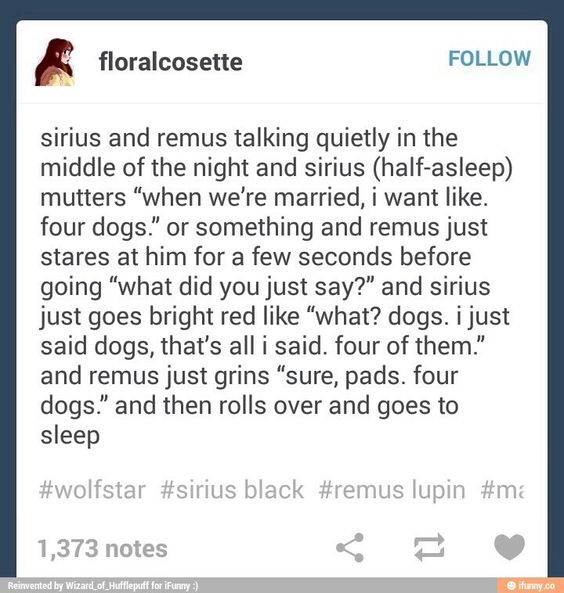 Yes Sirius and Remus are now my newest ship: