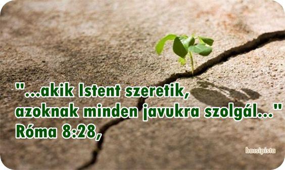 """""""...akik Istent szeretik, azoknak minden javukra szolgál..."""""""