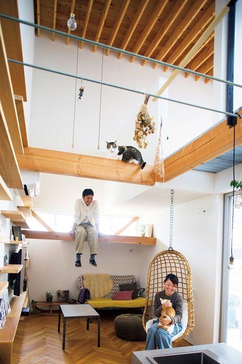 注文住宅事例 キャットウォークを張り巡らせた 猫が家じゅうをグルグルできる家 Sumai 日刊住まい 小さいアパートのデザイン 家 住宅