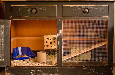 Animal cage made out of dresser i totally have to do this for Rabbit cage made out of dresser